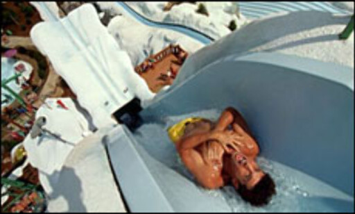 Summit Plummet. Foto: Blizzard Beach, Walt Disney World