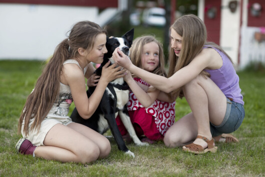 Hunder liker ikke å bli klemt. Faktisk er det noe av det verste man kan gjøre mot en hund, forteller forfatter og hundetrener Turid Rugaas.  Foto: NPX/Scanpix
