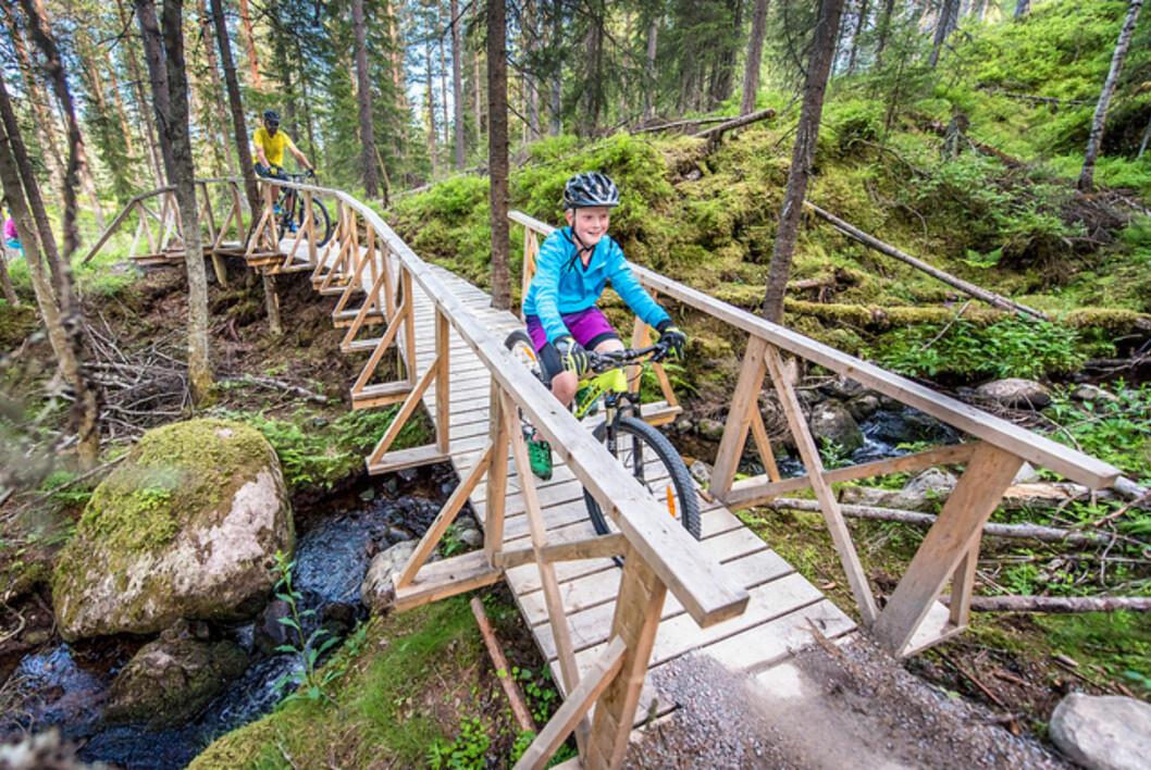 PLANKEBRU: En elv, ikke noe problem!  Foto: Hans Martin Nysæter / Destinasjon Trysil