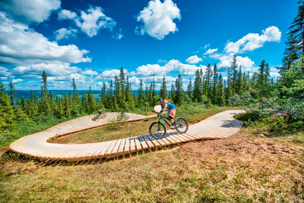 FLYTSTI: Ta heisen opp i naturskjønne omgivelser, sykle ned igjen.  Foto: Hans Martin Nysæter / Destinasjon Trysil