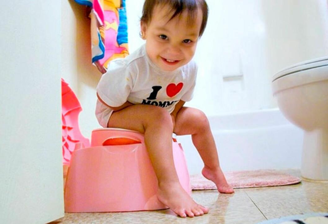Masse ros og påskjønnelser gjør pottetreningen til en glad stund. Foto: Todd Morris / Flickr CC
