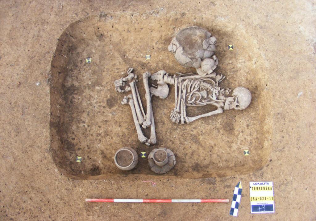 BEGRAVET SOM KVINNE: Dette skjelettet av en mann, som levde for rundt 5000 år siden, ble nylig gravd ut i Tsjekkia. At han ble begravet som en kvinne, antyder at han var homofil eller transseksuell, mener arkeologene. Foto: All Over Press