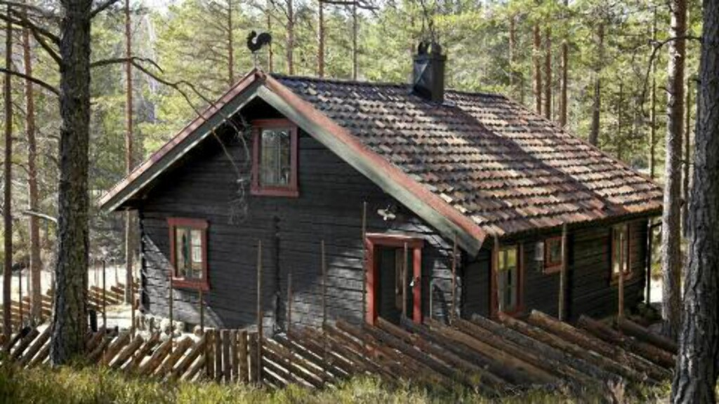BYTTET MOT BJØRKESTAMMER: Den forrige eieren byttet til seg hytta mot en tilsvarende mengde bjørkestammer til fyring.  FOTO: Per Erik Jæger