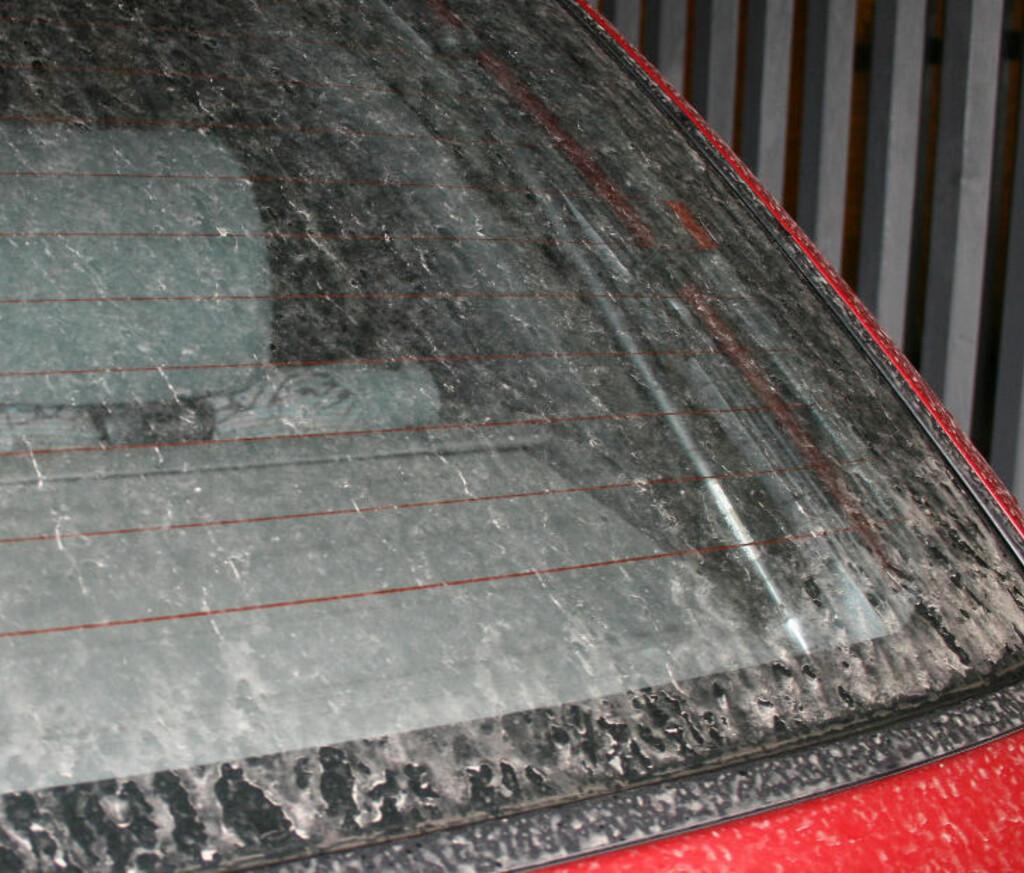 TØRT: Denne bilen ble vasket for bare to timer siden. Slik ser den ut nå. Foto: Jonas Rød