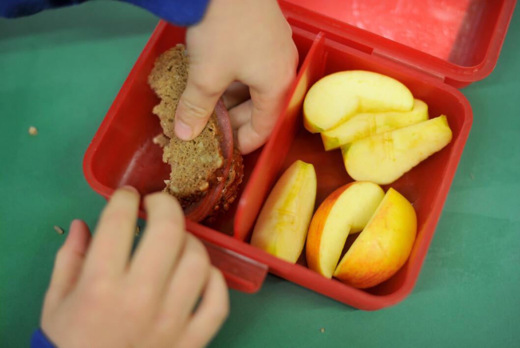 <strong>SUNNE VALG:</strong> Brødskive med proteinrikt pålegg og frukt er gode ingredienser i matboksen.   Foto: Frank May/NTB scanpix