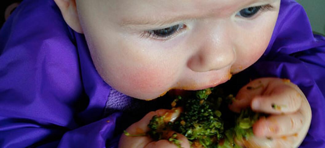 Lerke (her 7,5 mnd) spiser selv broccoli