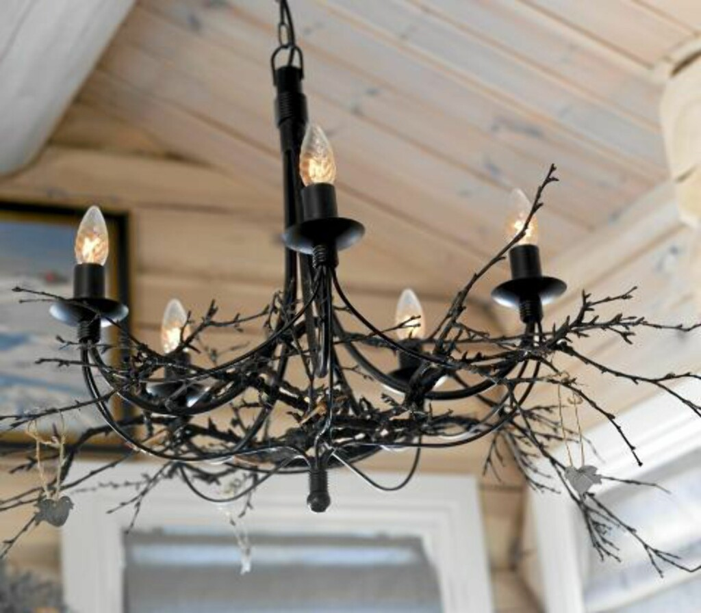 KVISTLAMPE: Naturelementer i interiøret er populært og dekorativt Foto: Per Erik Jæger