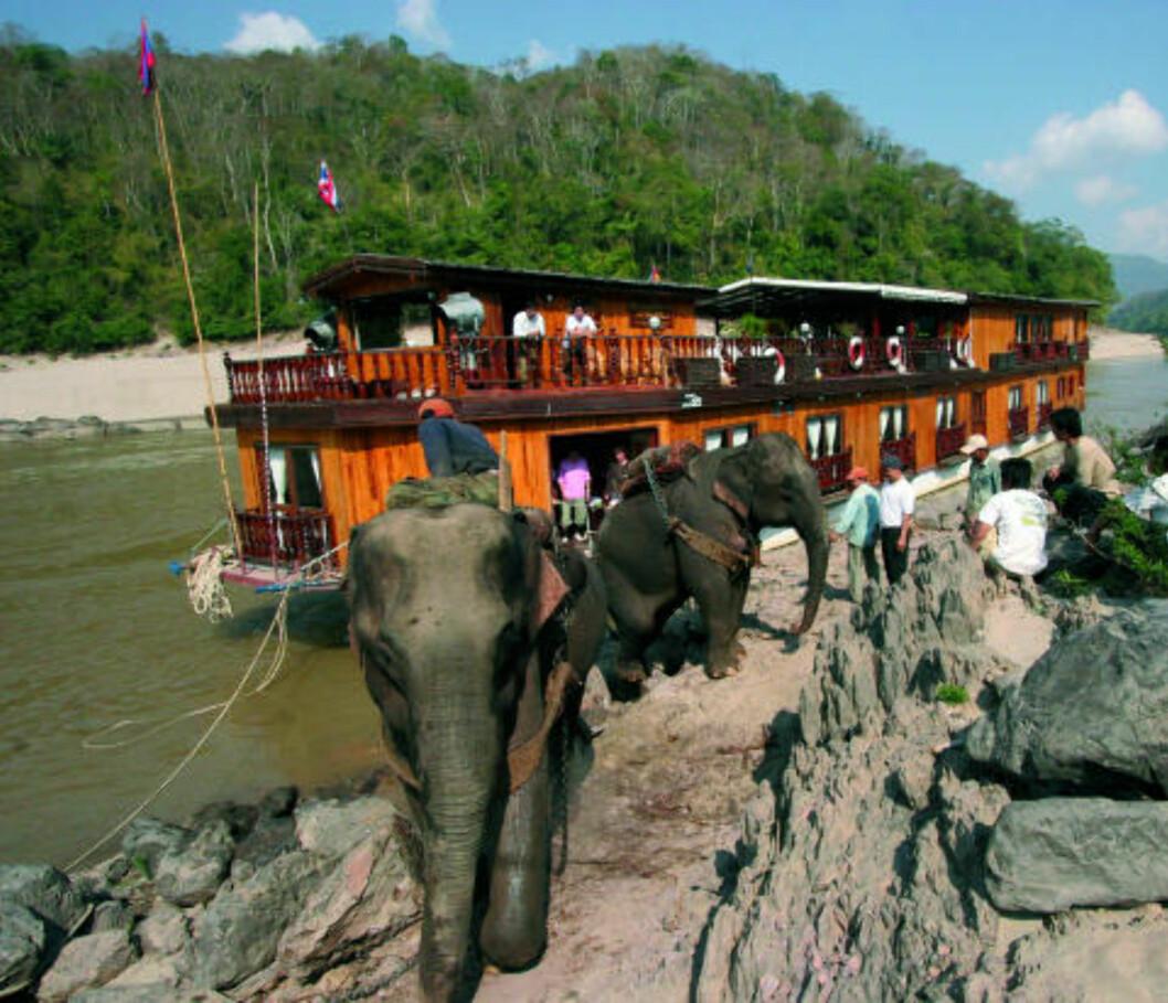 MEKONG: Blir du med på elvecruise på Mekong, ser du kanskje elefanter ved bredden. Foto: Escape Travel