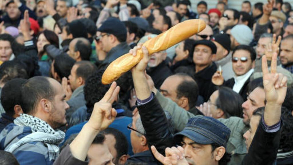 VIL DET SPRE SEG?: Mens unge gutter, væpnet med staur, køller og balltrær kontrollerer gatene i Tunisia, er det mange som nå tror at revolusjonen vil spre seg til andre arabiske land. Foto: SCANPIX/REUTERS