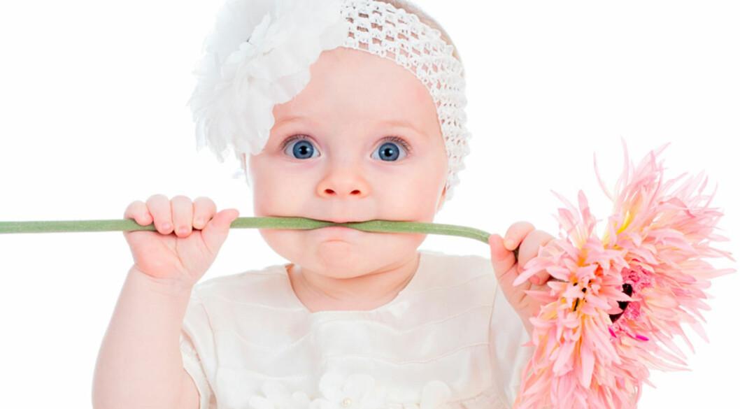 BLOMSTERINSPIRASJON: Vakre og særegne jentenavn. Foto: Shutterstock ©