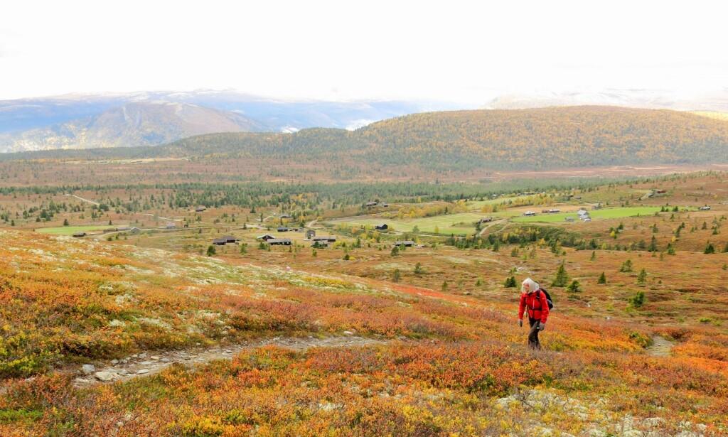 HØSTFERIE: I Nord-Norge kan de se frem til en høstferie med strålende høstvær, men i Sør-Norge kommer regnet til å pøse ned. Foto: Paul Kleiven / NTB scanpix NB! Modellklarert