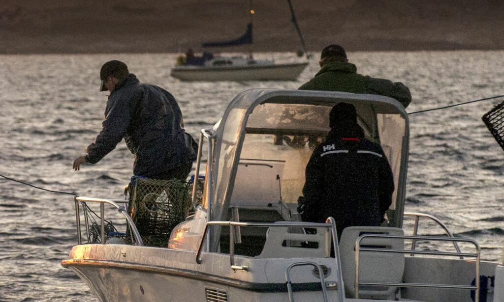 image: Har allerede beslaglagt over 150 ulovlige teiner
