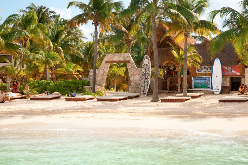 PLAYA NORTE, ISLA MUJERES: Denne stranden er ansett for å være den beste i hele Mexico.  Foto: Ving