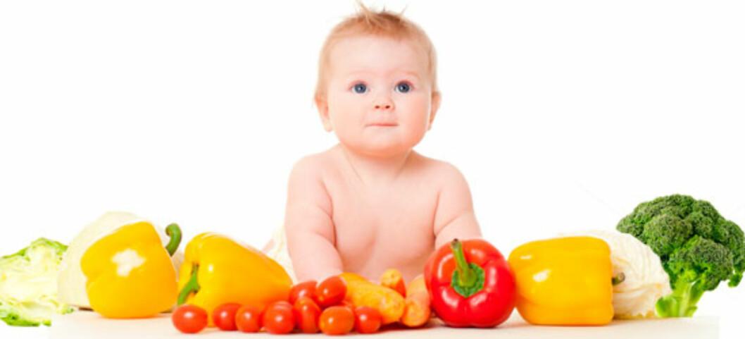 Mat fra planteriket er sunt - men barn trenger også andre matvarer. Foto: Shutterstock ©