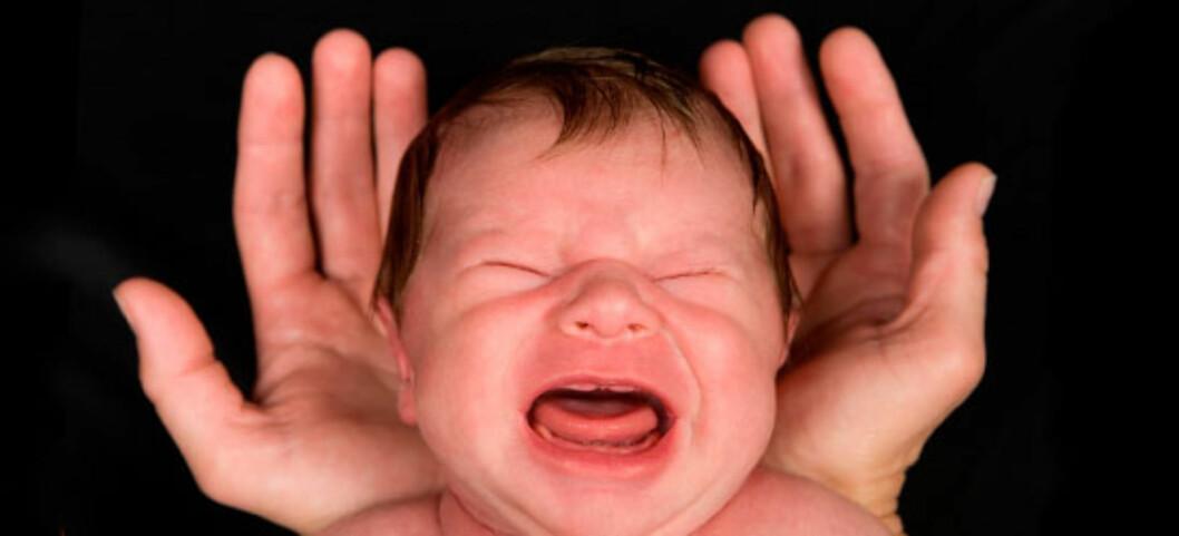 Det er normalt at spedbarn gråter men det er også normalt at de nokså lett lar seg trøste. Foto: Shutterstock ©