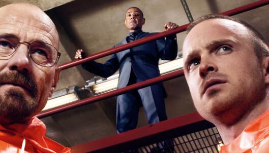 Politimann kopierte «Breaking Bad» - lagde narkoplantasje