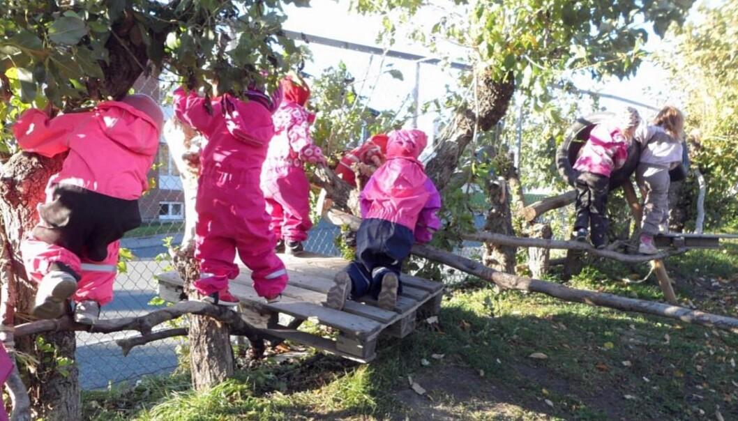 <strong>HINDERLØYPE:</strong> Et av de mest populære innslagene i barnehagen, er hinderløypen barna selv har bygget - og som blir litt lengre for hver eneste dag. Foto: Privat