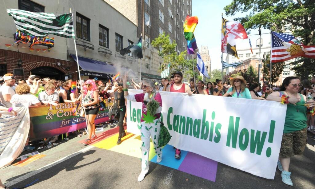 Legalisering: Det er stor forskjell på den amerikanske og norske debatten omkring cannabis. Under valget i november skal enda fem stater i USA gå til valg på å legalisere cannabis, skriver innleggsforfatteren. Foto: Sam Simmonds / Polaris / NTB scanpix
