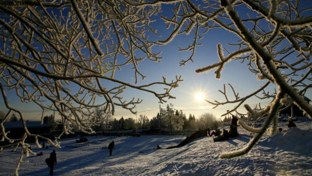 KALDT, MEN FINT: På Østlandet er det meldt kaldere vær mot helga, men samtidig er det stor sannsynlighet for sol.  Foto: Håkon Mosvold Larsen / SCANPIX