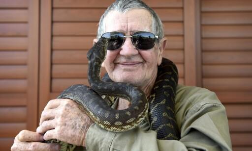 DYREFAMILIE: Steve Irwins far, Bob, har skrevet om forholdet sitt med sønnen i en ny bok. Her fotografert sammen med pytonslangen Rosie. Foto: EPA/DAN HIMBRECHTS, NTB scanpix