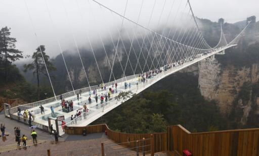GLASSBRU: Den 430 meter lange glassbrua i Kina ble så populær at den måtte stenge to uker etter åpningen i sommer. Foto: EPA /NTB Scanpix