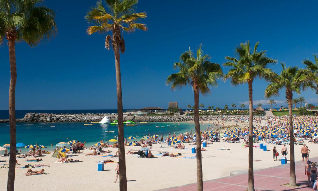 SØKER VARMEN: Nordmenn svermer til Kanariøyene som aldri før. Gran Canaria er fortsatt solhungrige nordmenns soleklare vinterfavoritt. Foto: NTB Scanpix