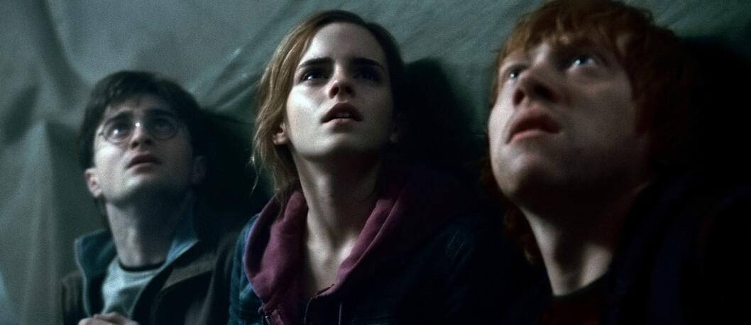 FILMENE: Harry Potter, Hermione Granger og Ron Weasley i en av de mange dramatiske scenene. Foto: Mary Evans Picture