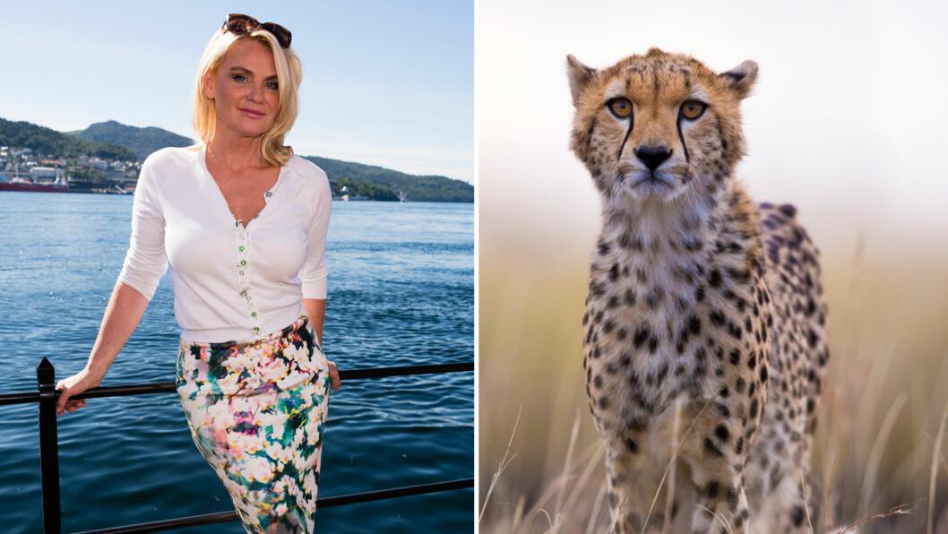DRAMATISK BESØK: Da Mia Gundersen og sønnen Daniel besøkte et naturreservat i Sør-Afrika for omlag en måned siden, fikk artisten et svært ublidt møte med en gepard (illustrasjonsbilde t.h).  Foto: Geir Egil Skog/ NTB Scanpix