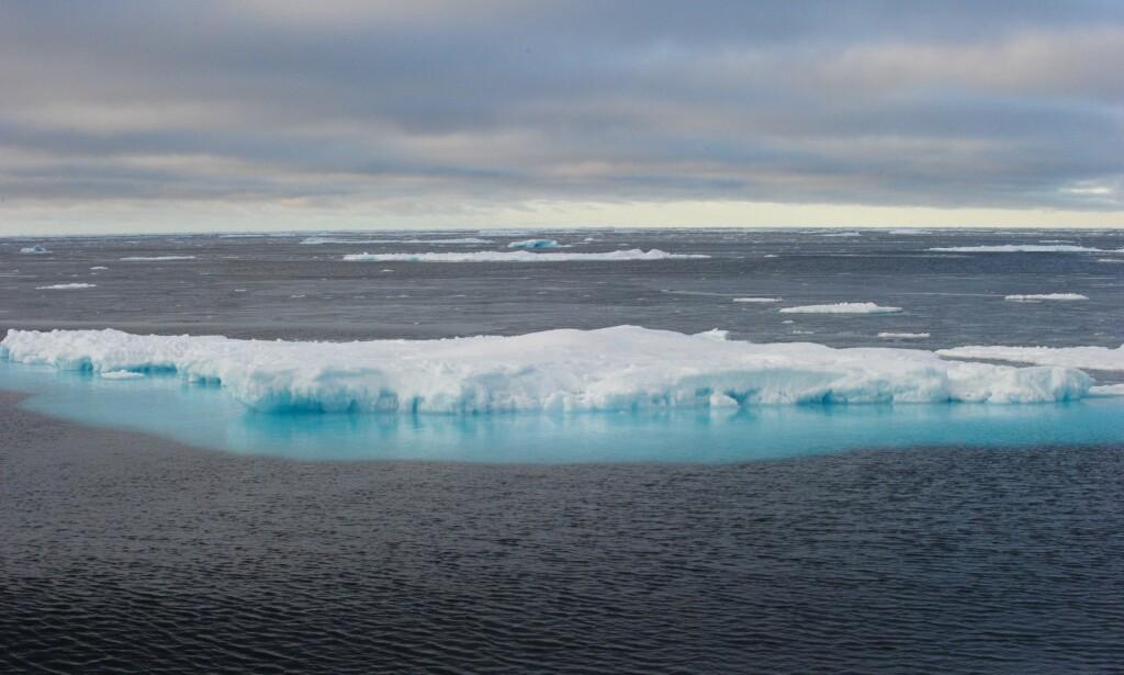 """ISFRITT I 2045 ? : Is i Nordvestpassasjen fotografert fra den kanadiske isbryteren og forskningsfartøyet """"CCGS Amundsen"""" 10. september 2015. September er den årlige måneden med minst havis rundt Nordpolen. Foto: CLEMENT SABOURIN, AFP/NTB Scanpix."""