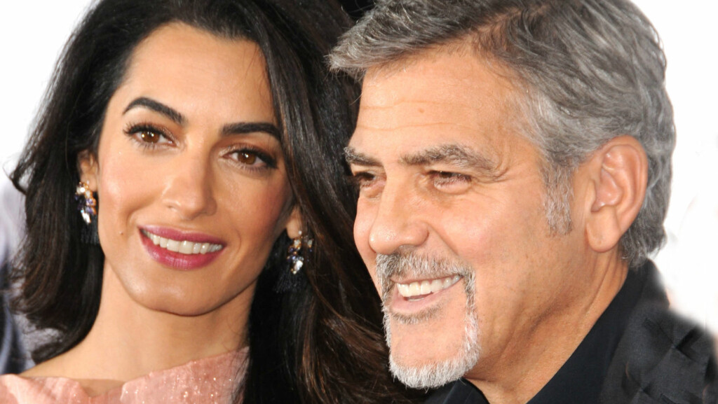 ADOPTERTE VALP: Denne uken ønsket Amal og George Clooney valpen Millie velkommen til familien.  Foto: Polaris