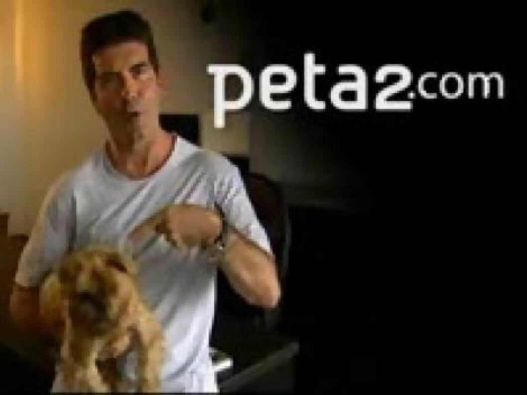 Simon Cowell in a public service announcement ad for PetaUSA - 30.08.06Supplied by WENN(WENN does not claim any Copyright or License in the attached material. Any downloading fees charged by WENN are for WENN's services only, and do not, nor are they inte