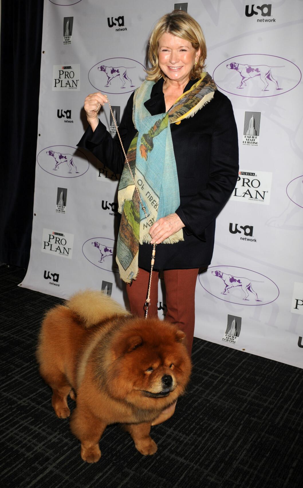 KJENDISHUND: Martha Stewart har fire hunder, og her er hun med en av dem på et hundeshow i New York. Foto: Fame Flynet/All Over