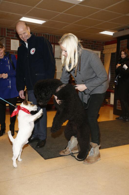 DYREVENN: Kronprinsessen hilste på flere hunder på sykehjemmet i Asker. Foto: Andreas Fadum, Se og Hør