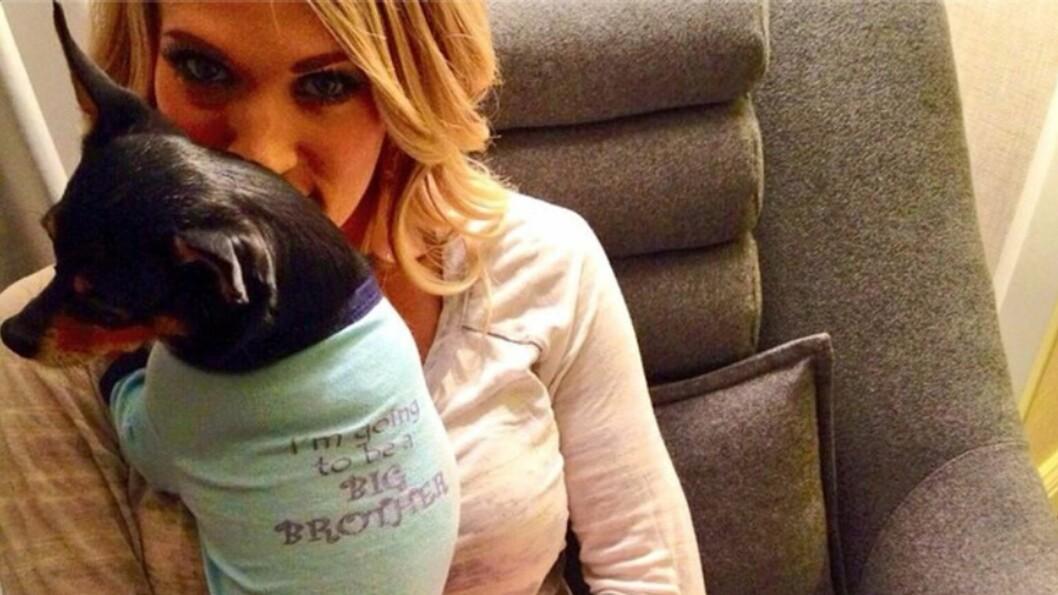 BLIR MAMMA: Pop- og countrystjerne Carrie Underwood er gravid, og det var hundene Ace og Penny som fikk æren av å annonsere den gledelige nyheten. Foto: Stella Pictures