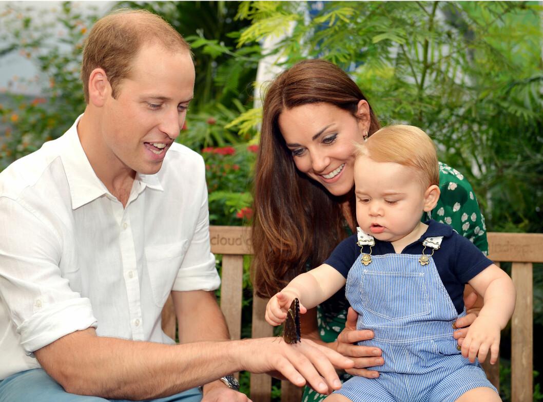 SE, SÅ STOR: I anledning prins George sin ettårsdag tirsdag denne uken, ble det lansert to familiebilder tatt på sommerfuglutstillingen på Natural History Museum i London i starten av juli.  Foto: Stella Pictures