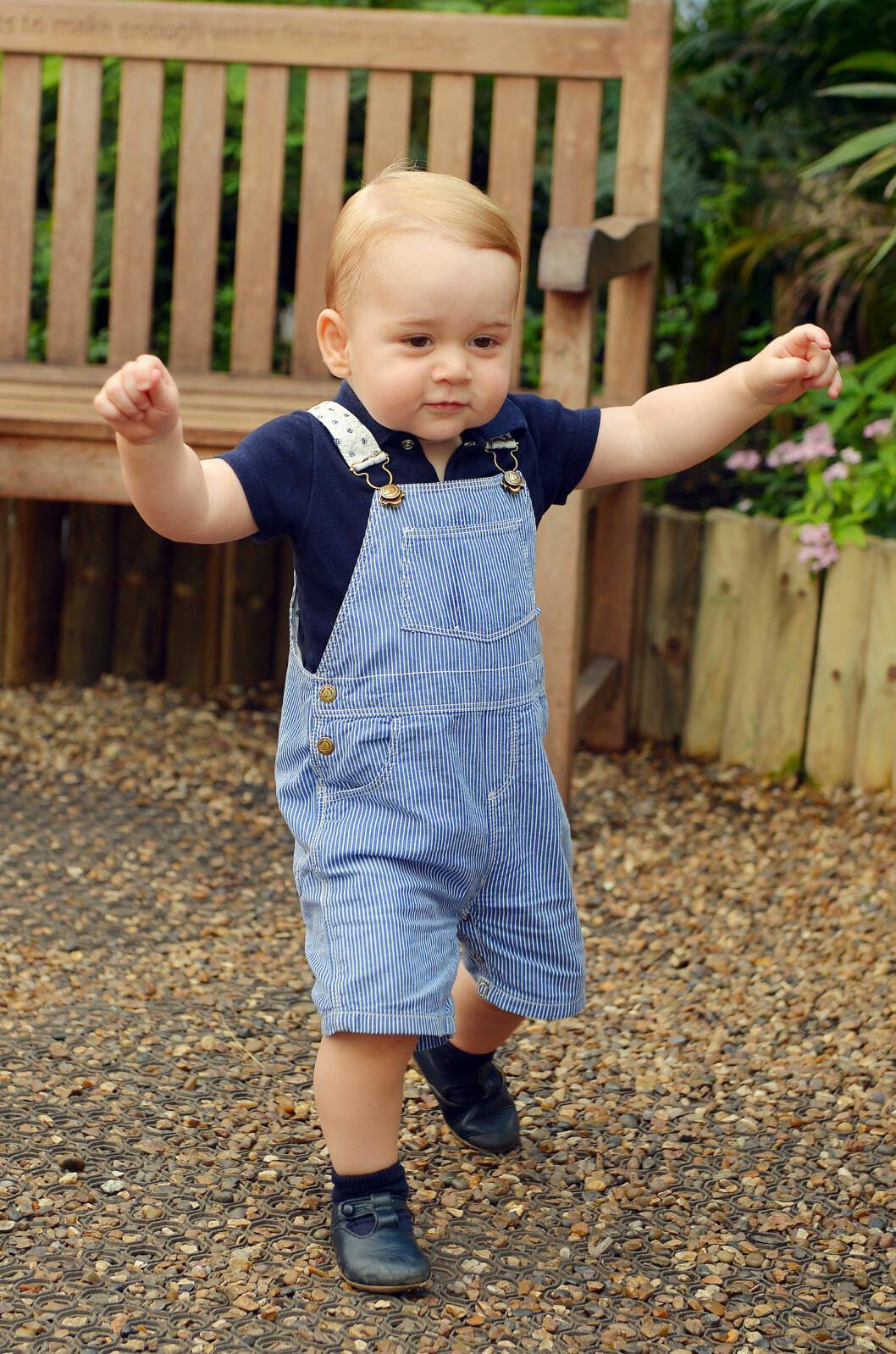 I RUTE: Barn begynner vanligvis å gå når de er mellom 9 og 18 måneder, og lille prins George demonstrerte at han var trygg på beina i starten av juli, da hans første soloportrett ble tatt. Foto: Stella Pictures