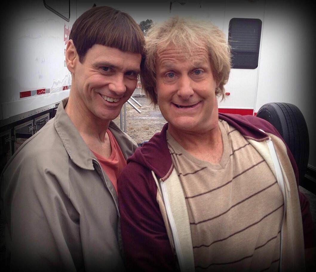 COMEBACK: Jim Carrey og Jeff Daniels er for tiden i gang med å spille inn en oppfølger til filmen «Dum og Dummere». Foto: Stella Pictures