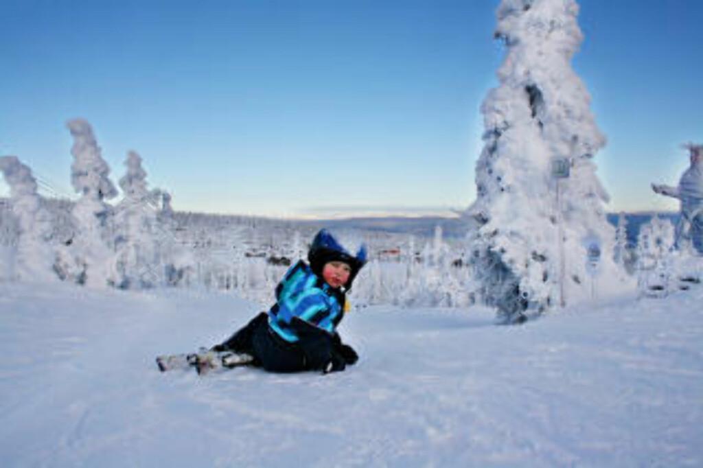 EVENTYRPARKEN:  Et eldorado for ferske slalomkjørere.  Her er Trysilfjellet på sitt beste i februar i år. Foto: Hilde Schjerve/Dagbladet   Foto: Hilde Schjerve / Dagbladet