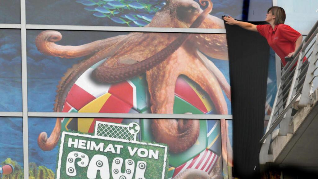 HVA SKJULER HUN? Gabi Barke, ansatt på akvariet i Oberhausen, henger et svart sørgebanner foran plakten som forteller at VM-helten Paul bodde der. Er Gabi og hennes kolleger innblandet i en konspirasjon og dekker over at Paul døde for over tre måneder siden? Neppe, men det er påstandene fra en kinesisk filmskaper. Foto: Roland Weihrauch, AFP/Scanpix
