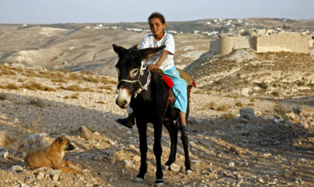 IDYLL: En ung gjeterjente på eselryggen tar en pust i bakken sammen med beduinfamiliens valp.