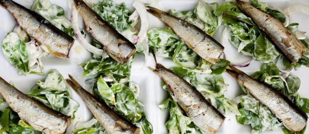 BRIMI-MAT: Salat med sardiner.