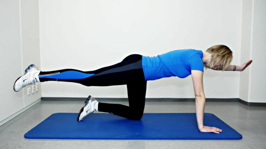 DIAGONAL ARM- OG BENSTREKK: Stå med knærne og albuene mot bakken, og løft annenhvert ben og motsatt arm opp. Fem repetisjoner på hvert ben x tre serier.
