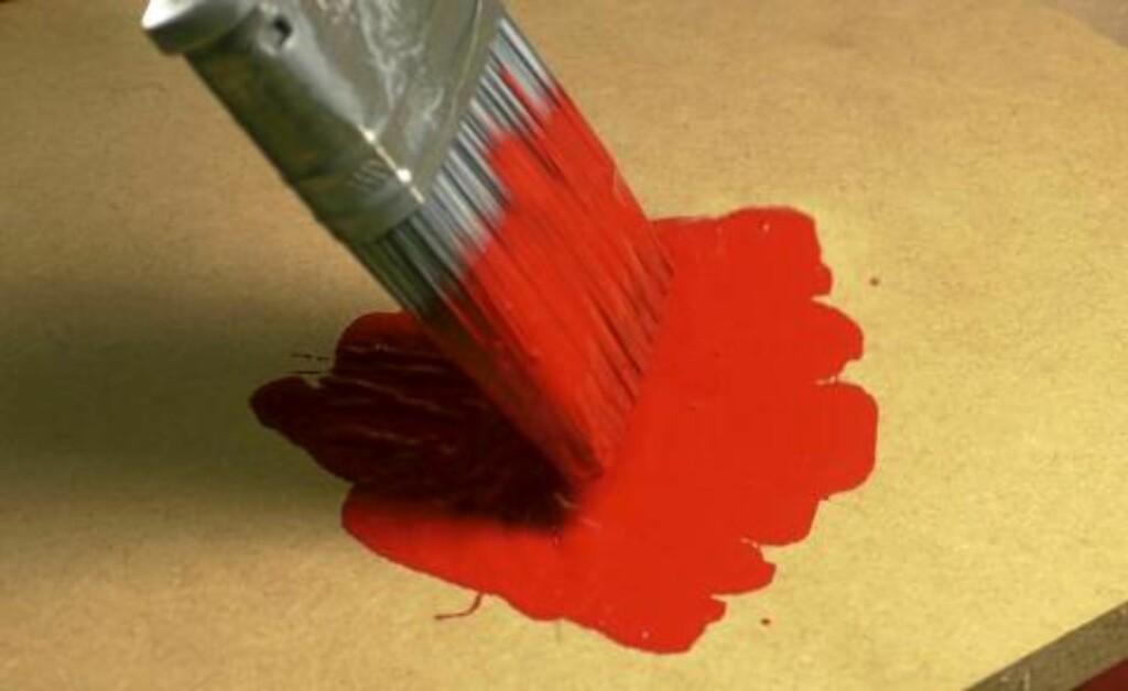 TRIM: Dypp penselen i malingen og støt tuppen ned på platebiten noen ganger. Foto: Øivind Lie