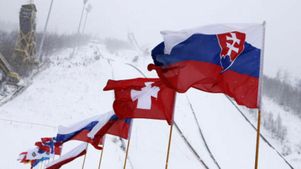 The flags of participating countries in the Ski Jumping World Cup blow in the wind at the ski jumping hills in Harrachov December 11, 2010. Organisers were forced to cancel Friday's qualification round due to bad weather conditions and are waiting for conditions to improve before deciding on today's competition. REUTERS/Petr Josek (CZECH REPUBLIC - Tags: SPORT SKI JUMPING)