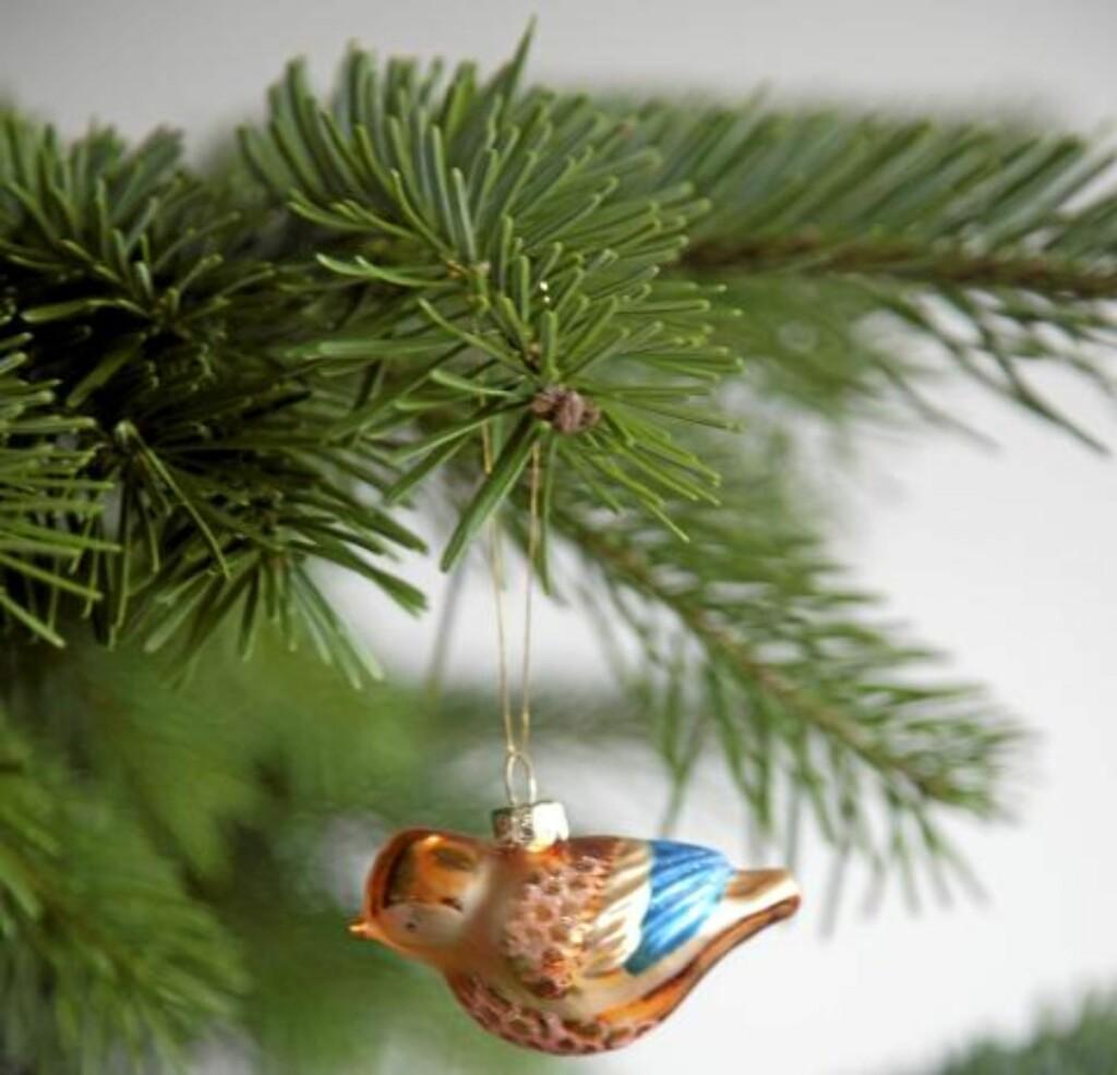 DEKORATIVT: Etterfyll med kaldt vann, treet er som en stor blomst. Illustrasjonsfoto: www.colourbox.com