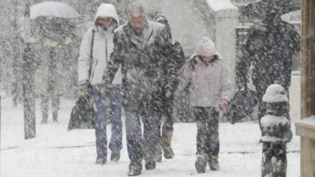 <strong>SNØKAOS:</strong> Dette bildet ble tatt i sentrum av London i går. Kraftig snøfall har hatt stor innvirkning på flytrafikken. FOTO: AP/Alastair Grant