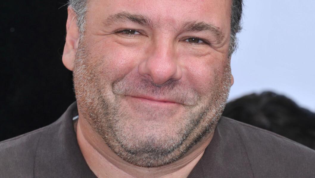 GENERØS: James Gandolfini, som gikk bort for to uker siden, testamenterte store pengesummer til både venner og ansatte. Foto: Fame Flynet
