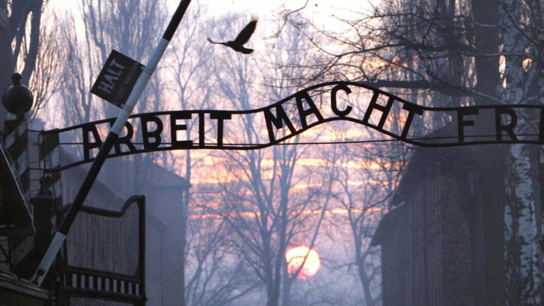 <strong>NAZISTENES UTRYDNINGSLEIR:</strong> Rundt 1,1 millioner jøder døde i nazistenes konsentrajonsleir i dagens Polen.  AFP PHOTO/JANEK SKARZYNSKI