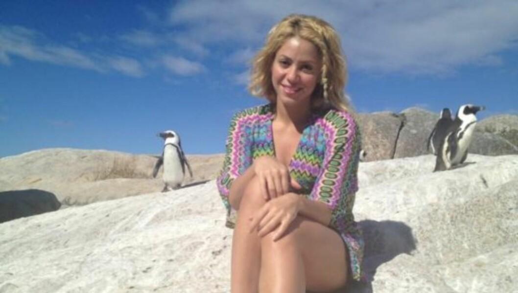 PÅ FERIE: Shakira har lagt ut flere bilder fra sin ferie i Sør-Afrika på Facebook. Her er hun sammen med noen langt vennligere dyr enn sjøløvene... Foto: Shakira/Facebook
