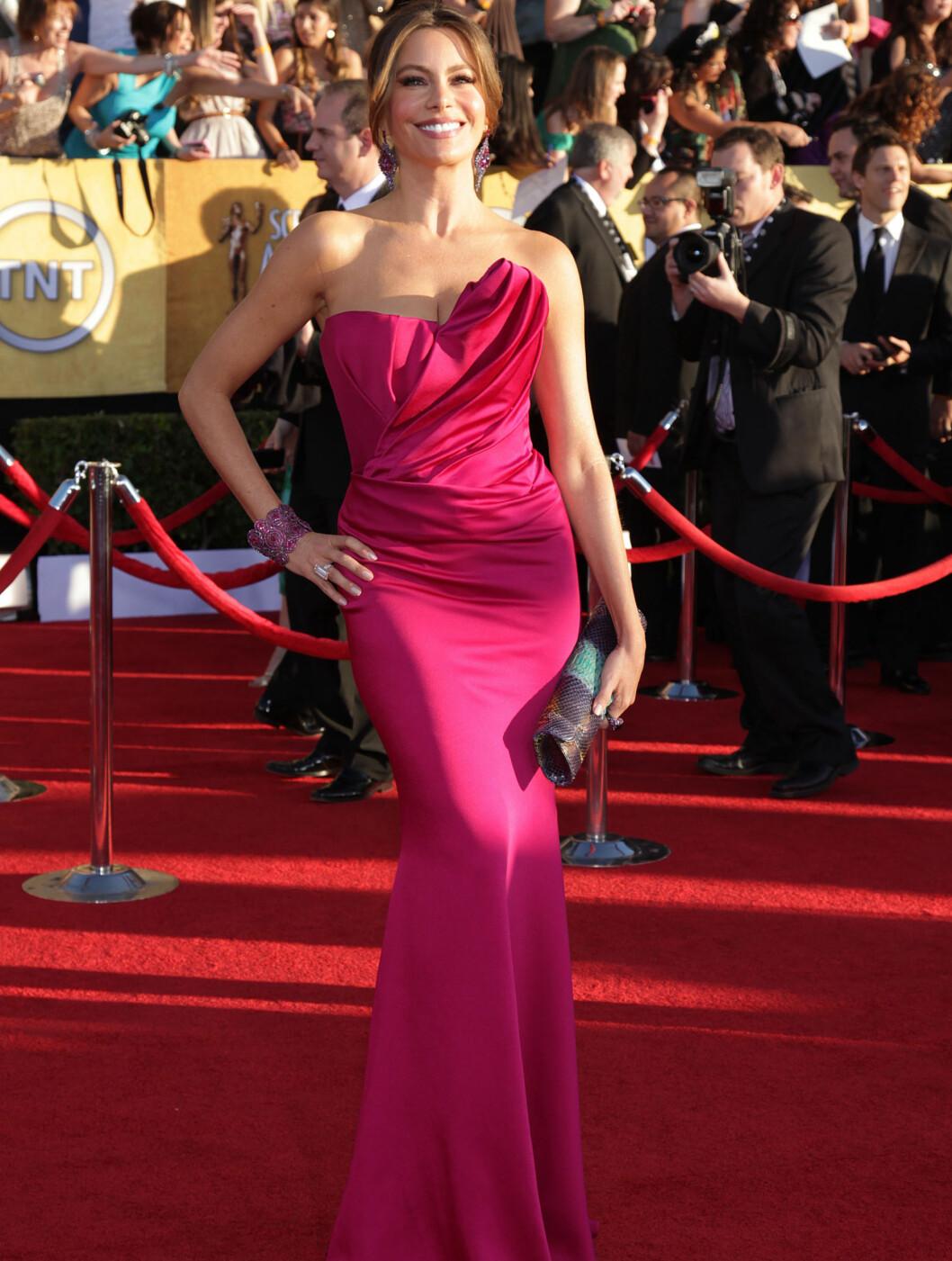 """SEXY SEÑORITA: """"Modern Family""""-stjernen Sofia Vergara (39) vekker bestandig oppsikt med sin veldreide silhuett. Hun valgte en bringebærfarget Marchesa-kjole, Thale Blac-clutch og Lorraine Schwartz-smykker. Foto: All Over Press"""